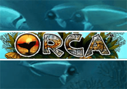Orca slot game
